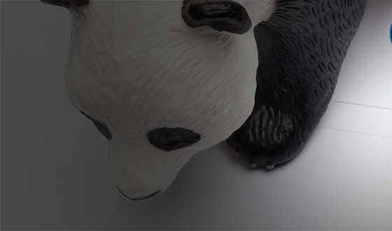 The Google Panda Algorithm Update & How It Affects You